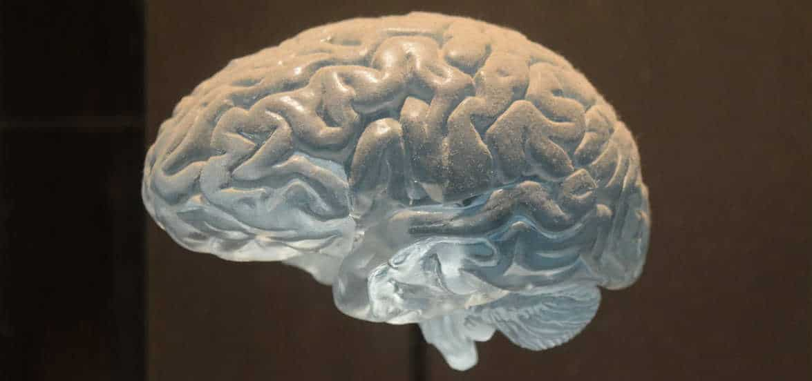 cosa cura neurologo