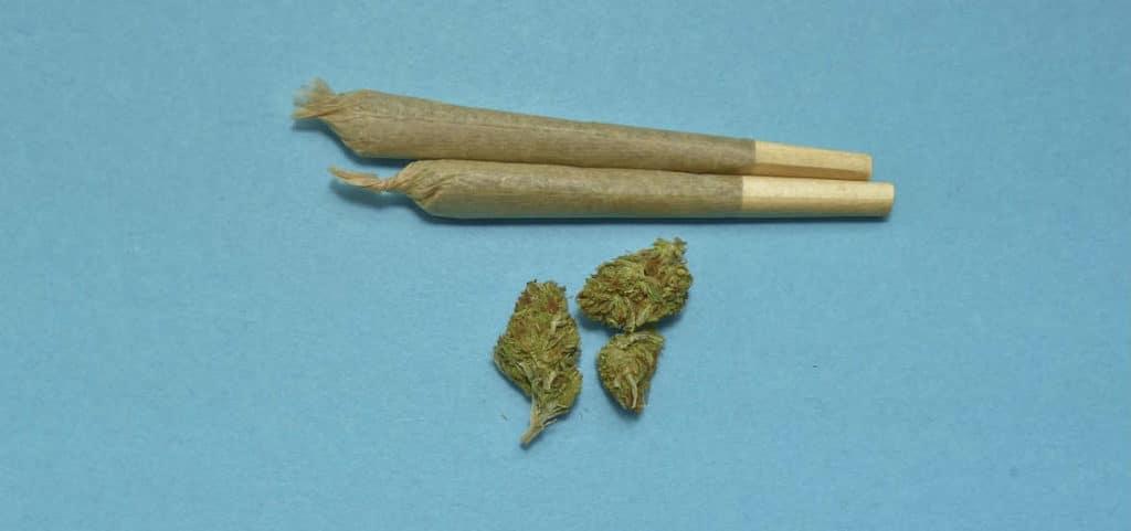schizofrenia indotta da marijuana